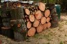 Dřevo nařežeme na polínka