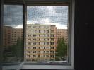 Ochranná síť pro kočky v okně